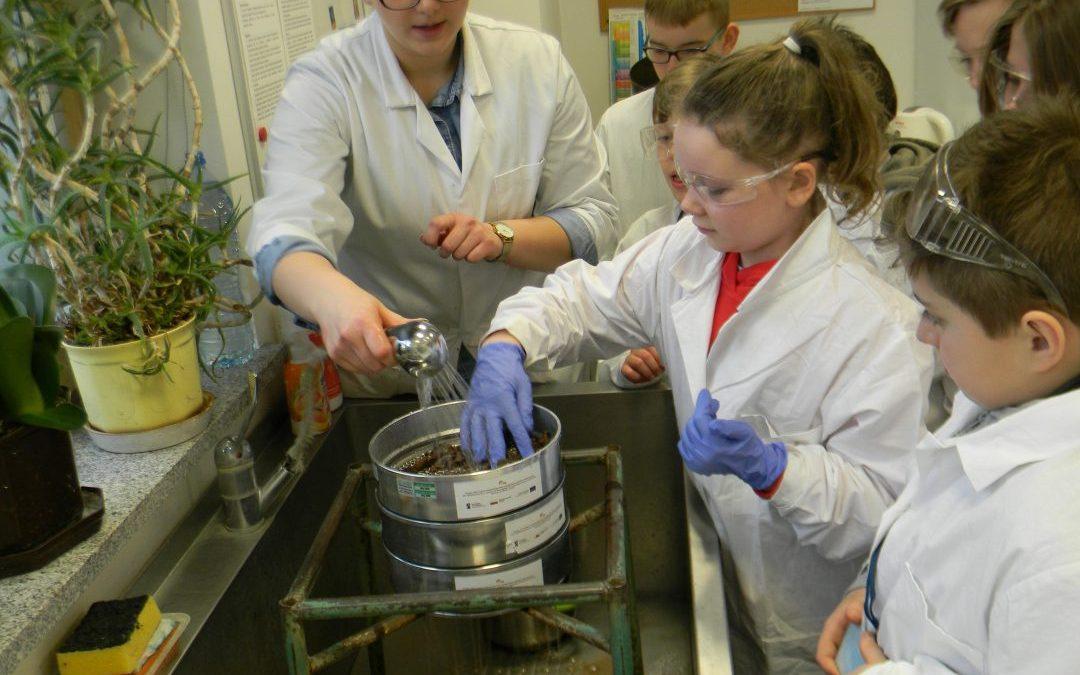 Projekt PING Program Implementacji Nauk Geologicznych w Szkole Podstawowej w Damicach