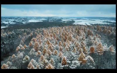 Gmina Iwanowice zimą